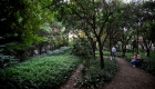 palazzo_tartaglione_giardino_sentieri