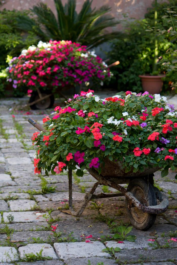 carriole_fiorite
