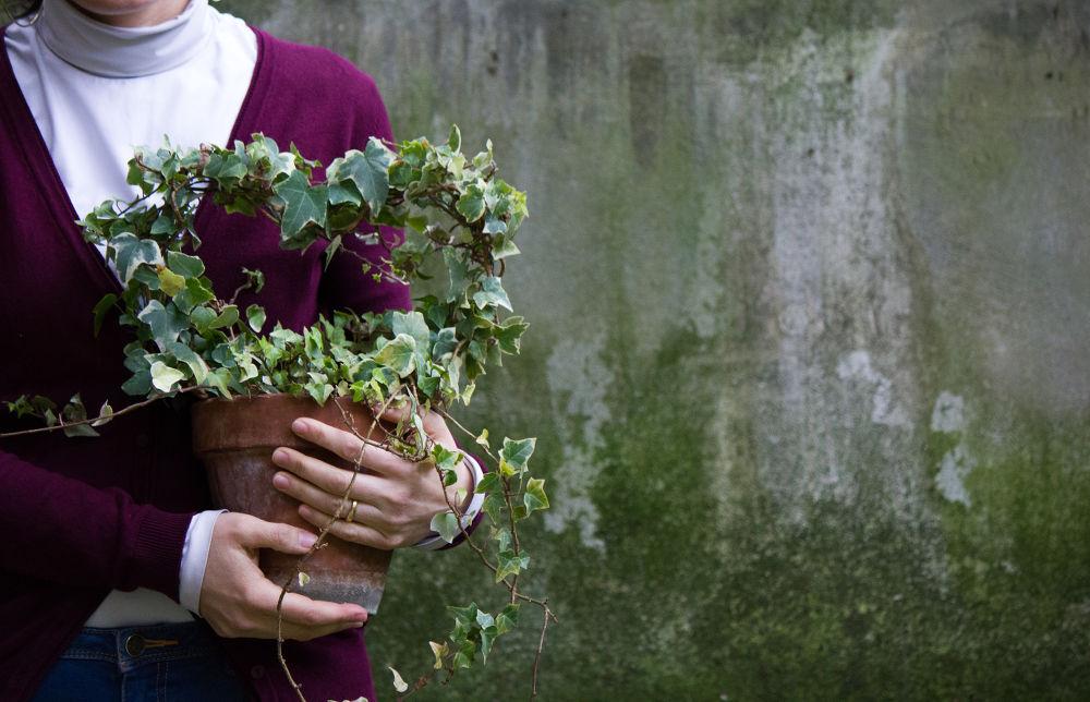 giardino_amore_mio