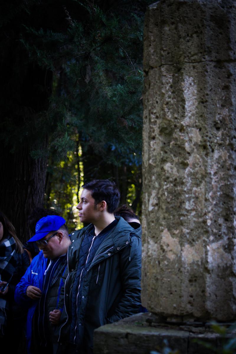 bosco_vecchio_10
